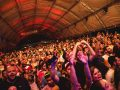 Rio de Janeiro Perfect Love Party